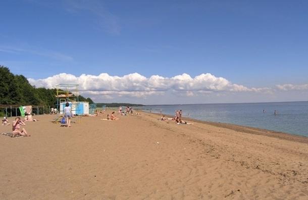 Роспотребнадзор: петербуржцам лучше воздержаться от купания на городских пляжах
