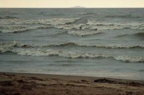На пляже Курортного района сотрудники полиции нашли человеческую ногу
