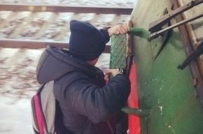 Влюбленную пару зацеперов сняли с поезда Москва – Санкт-Петербург