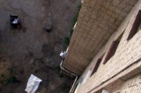 В центре Петербурга разбился 11-летний школьник