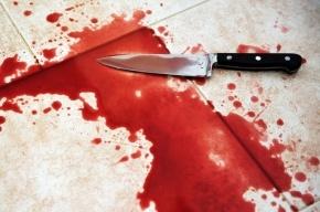 В Сланцах 56-летняя женщина убила своего брата