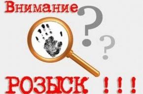 В Санкт-Петербурге ищут шестиклассника, уехавшего кататься на машине отца