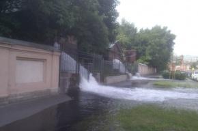 На Пеньковой улице прорвало трубу: водой залило дорогу