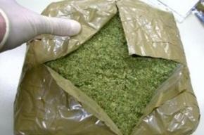 Наркополицейские ликвидировали канал поставки марихуаны из Крыма в Петербург