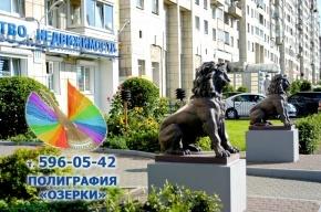 Полиграфия Приморский район