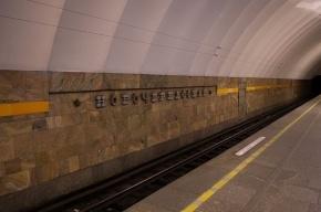 В Петербурге на станции Новочеркасская местная жительница сломала ногу