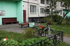 В Петербурге участились случаи краж с лестничных площадок