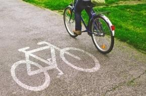 В «Подписных изданиях» презентуют книгу о проектировании городских велодорожек