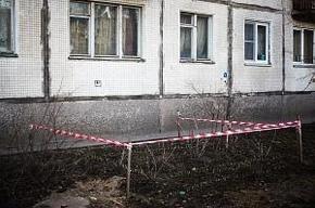 Жильцы дома № 4, корп. 1, по ул. Ярослава Гашека не могут избавиться от грызунов в подвале