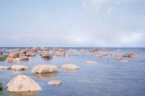 Из Финского залива извлекли тело утопленника