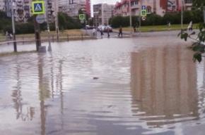 В Купчино одну из улиц залило грязью из-за прорыва трубы