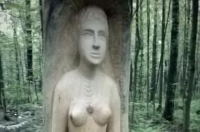 Славянские идолы появились в Сосновском парке