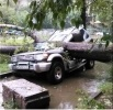 Тайфун в Хабаровске, 14.07.15: Фоторепортаж