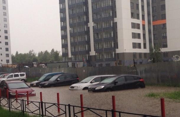 В северной части Петербурга выпало больше половины месячной нормы осадков