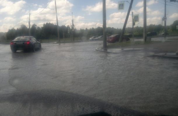 В Петербурге проспект Просвещения залило водой из-за прорыва трубы