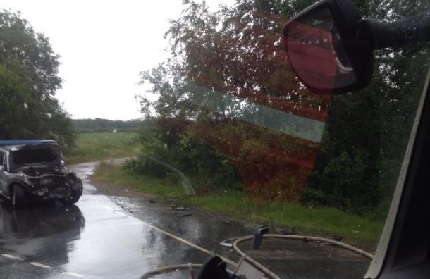 Пострадавшая в одной из аварий на Приозерском шоссе умерла в больнице