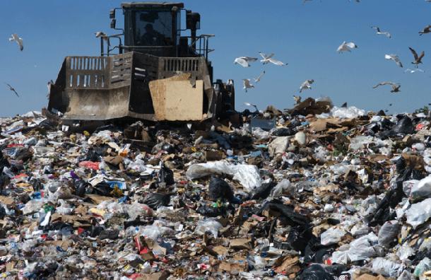 На полигон «Новоселки» продолжают незаконно сбрасывать мусор