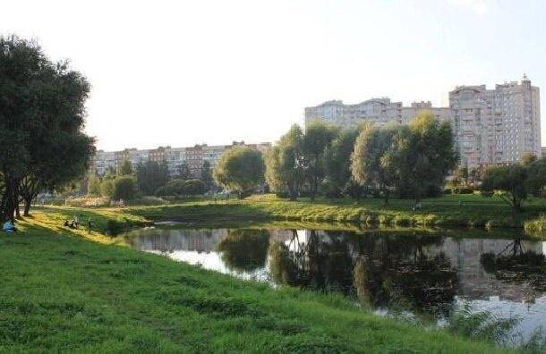 В воскресенье в Петербурге пройдет митинг в защиту парка Малиновка