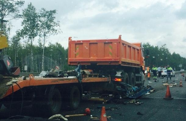 В страшном ДТП на Мурманском шоссе погиб человек