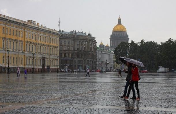 В ближайшее два часа в Петербурге ожидаются ливни и грозы