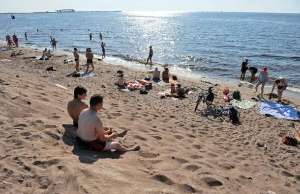 Роспотребнадзор: В Петербурге не оказалось безопасных пляжей