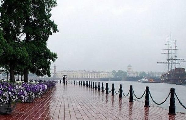 В Санкт-Петербург идет гроза и сильный ветер