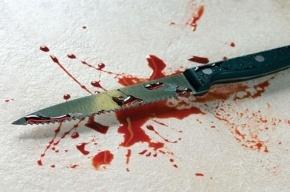 В Ленобласти пьяный мужчина убил своего знакомого, ударив его 31 раз ножом