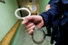В Купчино двух полицейских подозревают в вымогательстве 200 тысяч рублей