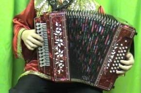 Житель Волгограда семь раз продал свою гармонь в Северной столице