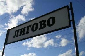 В Петербурге электропоезд сбил глухонемого пешехода
