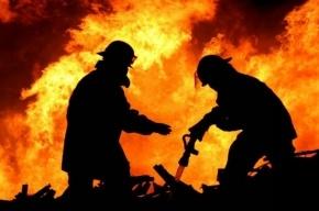 В Петроградском районе из горящей комнаты общежития спасли человека