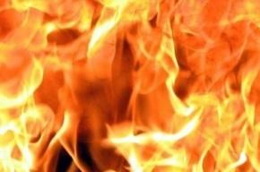 Автомойка горела на Геологической улице в Петербурге
