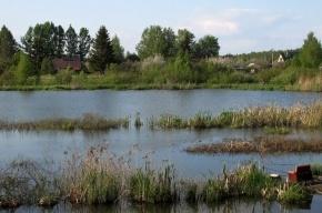 Из Сюревского болота Ленобласти достали тело мужчины с пакетом на голове
