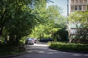 «Трешка» в престижном «спальнике» Петербурга стоит от 7 до 13 млн