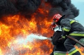 Пожар в Кронштадте унес жизнь одного человека