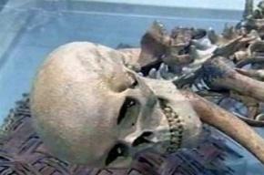 На КАД в несущей балке обнаружили замурованный скелет мужчины