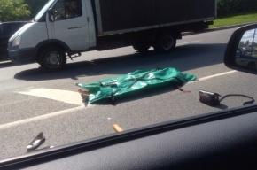 В аварии на Дачном проспекте погибла женщина-пешеход