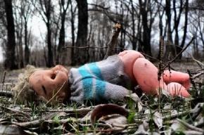 В Ломоносове третий четвероклассник стал жертвой одного педофила
