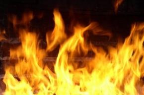 В Парнасе горели строительные вагончики