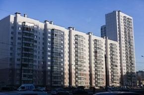 В подвале одного из домов Петербурга, предположительно, организовали общежитие