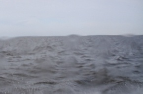 Из акватории Финского залива извлекли тела двух мужчин и девочки