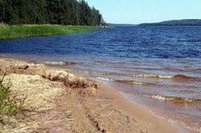 Недалеко от озера в Приозерском районе Ленобласти нашли тело несовершеннолетнего