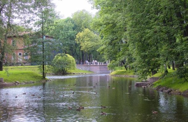Лопухинский сад открылся после реконструкции