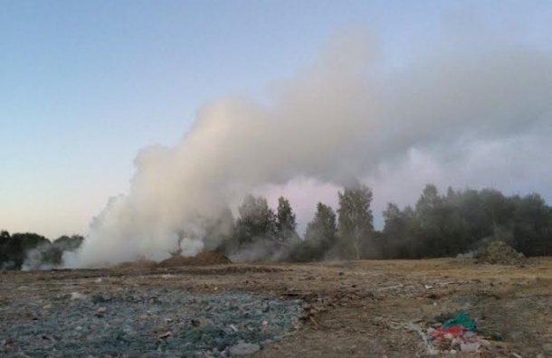 Жители деревни Скотное вновь жалуются на мусорный беспредел