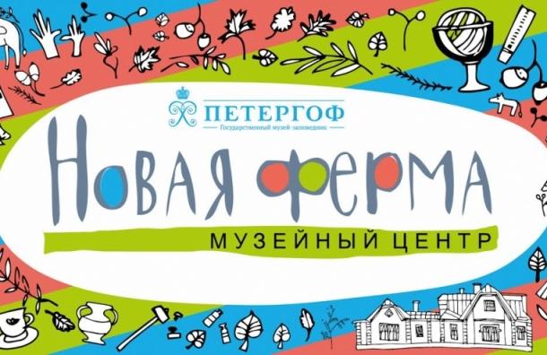 В Петергофе откроют детский музейный центр