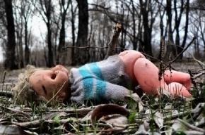 В пансионате «Молодежное» педофил изнасиловал девятилетнюю девочку