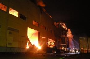 Огонь на складе в Пушкине тушили с вертолета