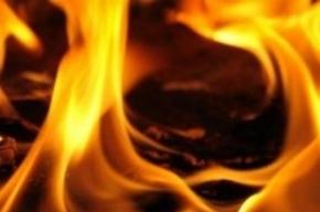 В Петергофе тушили пожар в нежилом здании