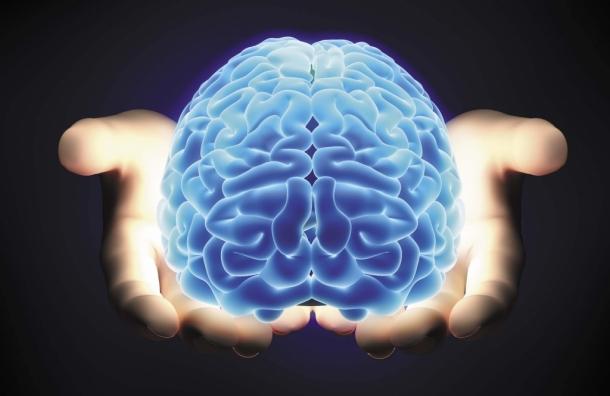 В «Буквоеде» отметят День мозга