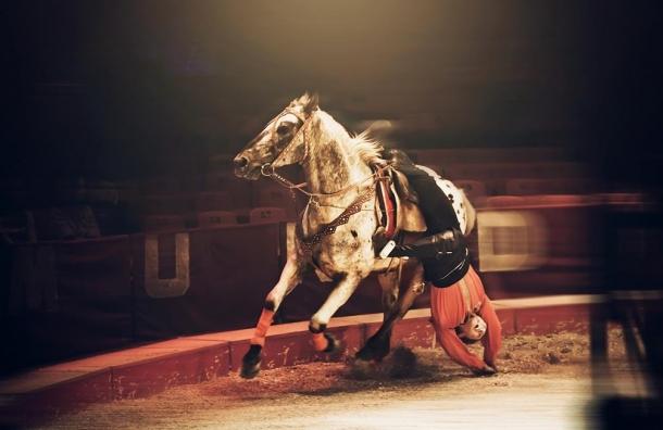 Новая программа цирка на Фонтанке «И Смех, и Риск, и Чудеса!»